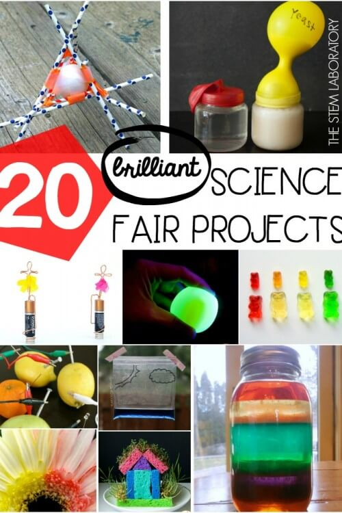 20 Science Fair Projects