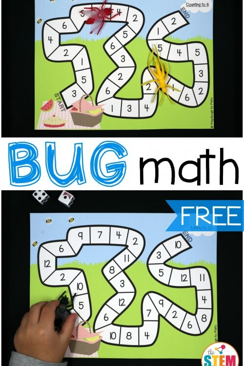 Bug Race Math Games