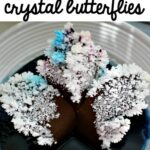 Magic Crystal Butterfly