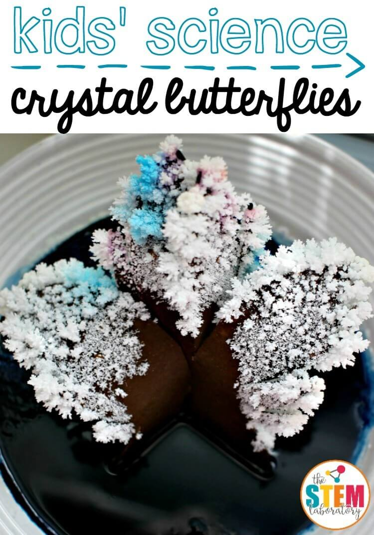 Awesome kids' science! Crystal butterflies.