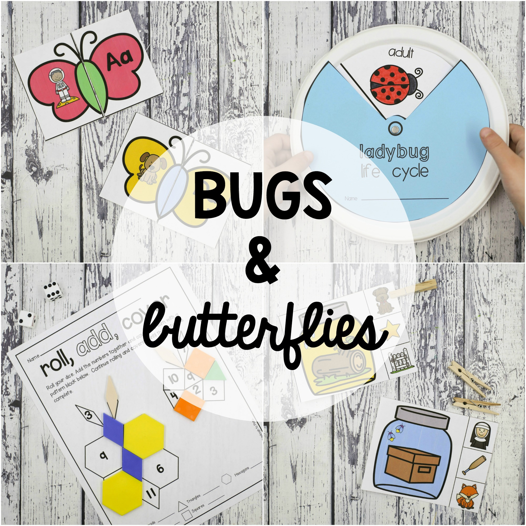 Bug and Butterfly Activity Pack