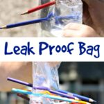 Leak Proof Bag