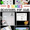 5 Senses Activities for Kids!