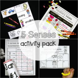 5 Senses Activity Pack