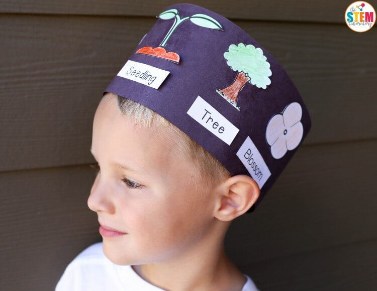 Free apple life cycle hats for kids!