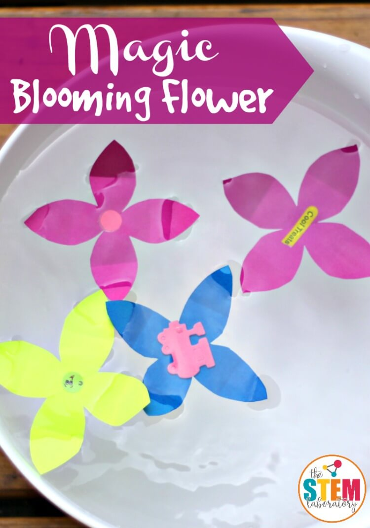 Make flowers out of paper and watch them magically unfold to reveal a surprise! A fun STEM activity that preschoolers can do all on their own.