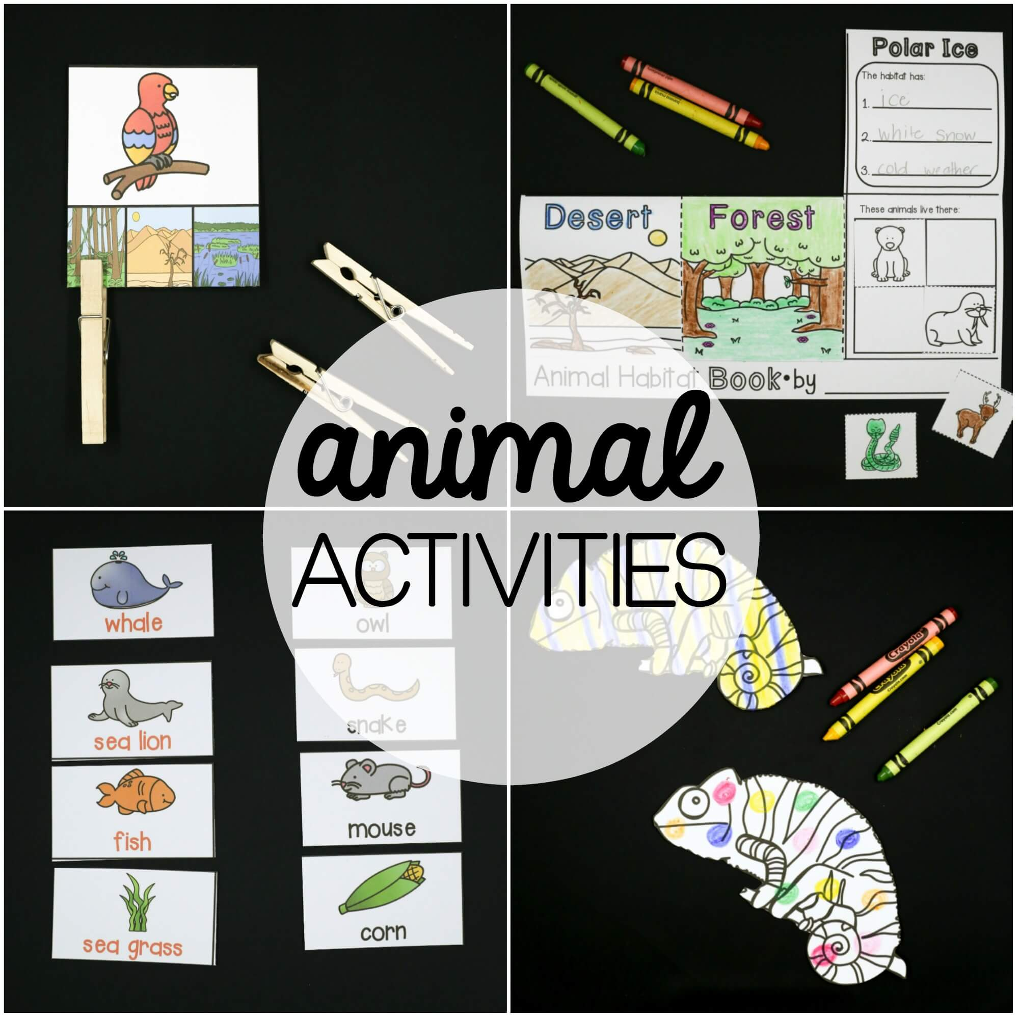 Animal Activity Pack