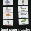 food-chain-puzzles