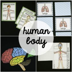 human-body-activity-pack