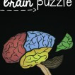 learn-about-the-parts-of-the-brain-as-you-solve-a-puzzle