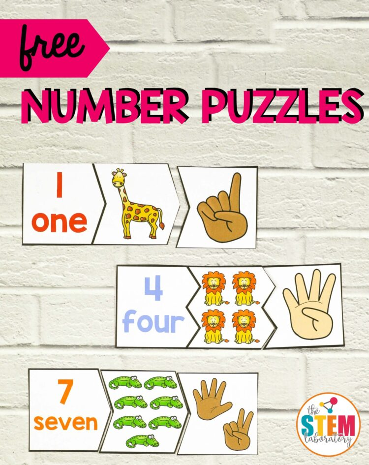 Zoo Number Puzzles The Stem Laboratory