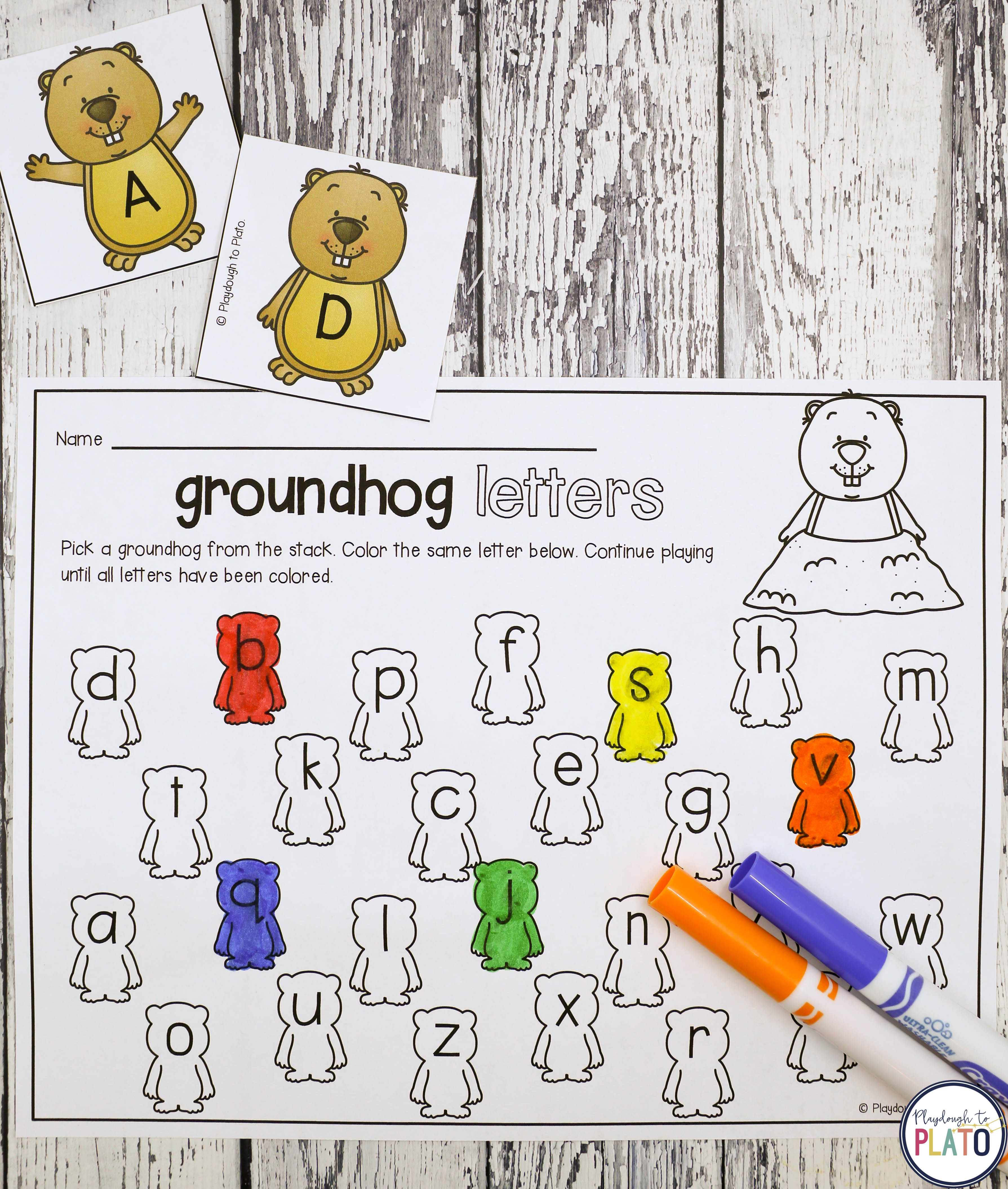 Groundhog Day Amp All About Groundhogs Kindergarten Classroom