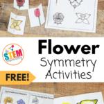 Flower Symmetry