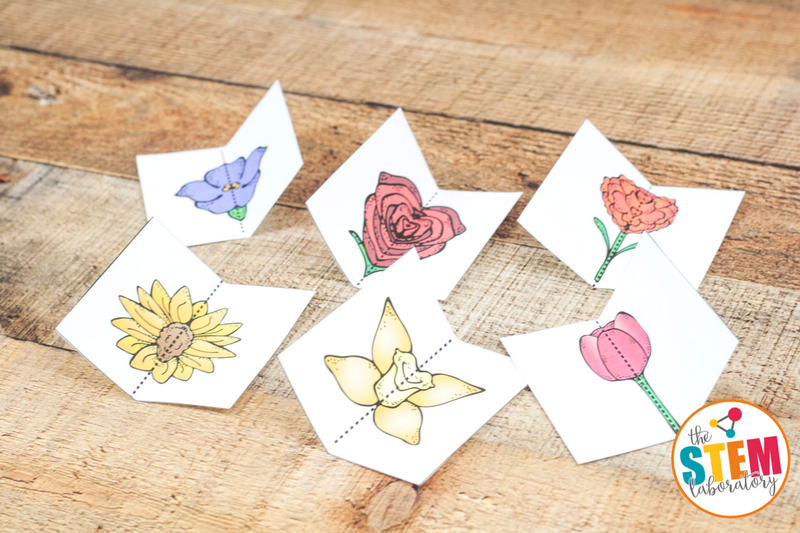 Work on symmetry in art, nature, and math with this fun flower themed symmetry set!