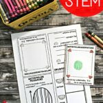 Watermelon STEM Book