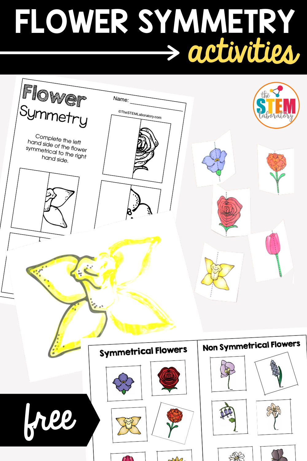Flower Symmetry Activities