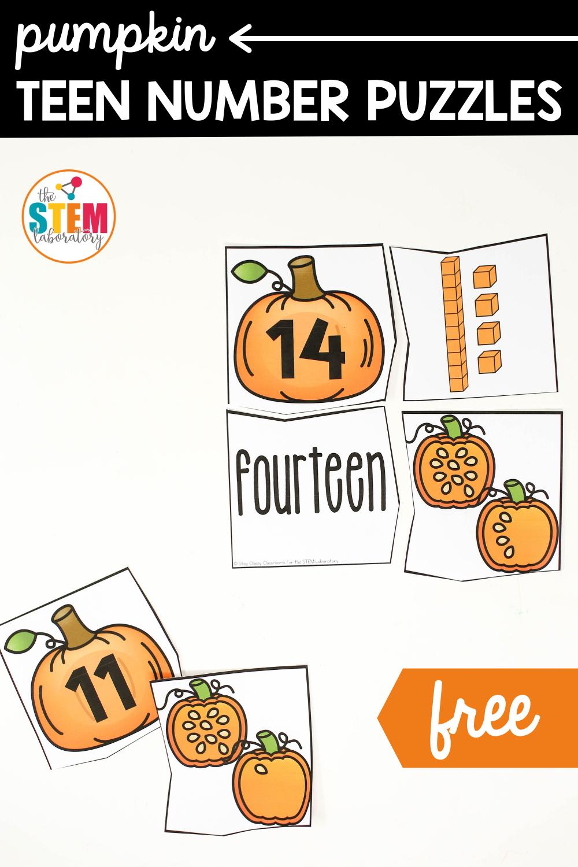 Pumpkin Teen Number Puzzles